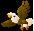 Kennedys Pet Farm bird